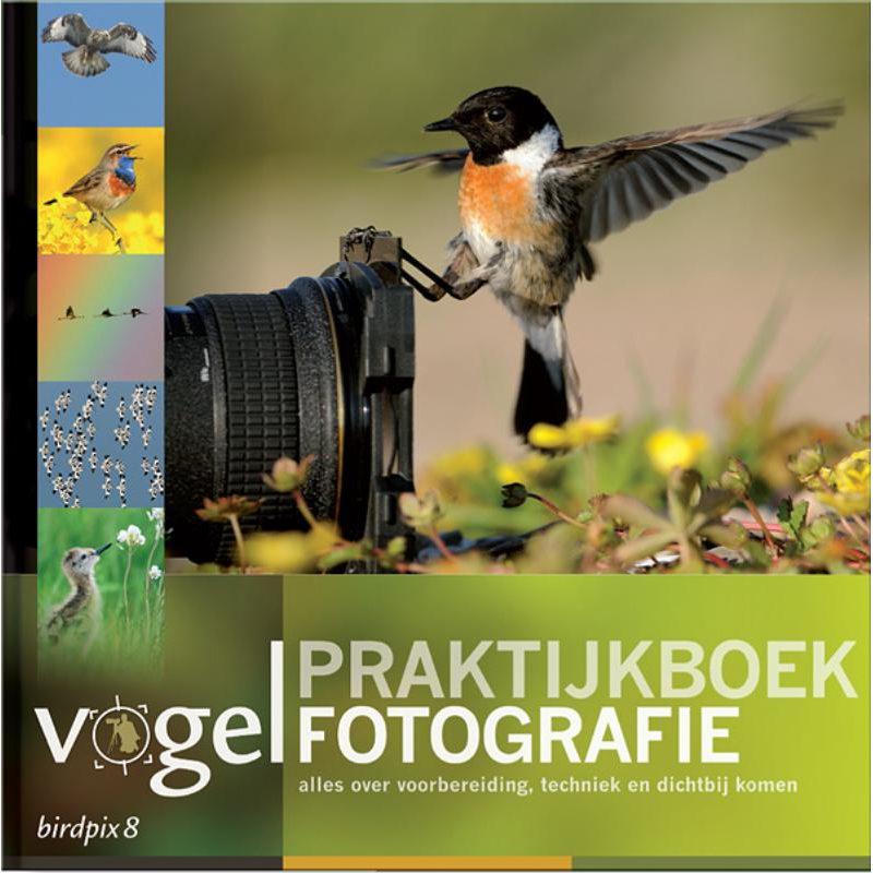 Foto van Birdpix 8 - Praktijkboek Vogelfotografie