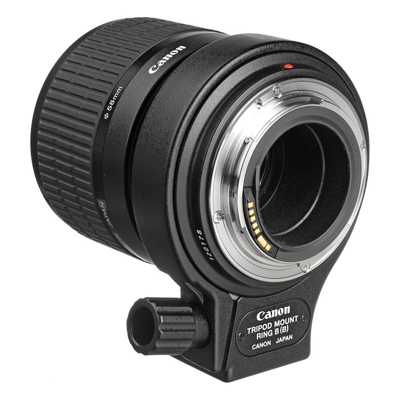 Canon MP-E 65mm f/2.8 1-5x Macro Photo objectief