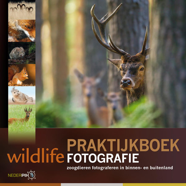 Foto van Birdpix - Praktijkboek Wildlifefotografie