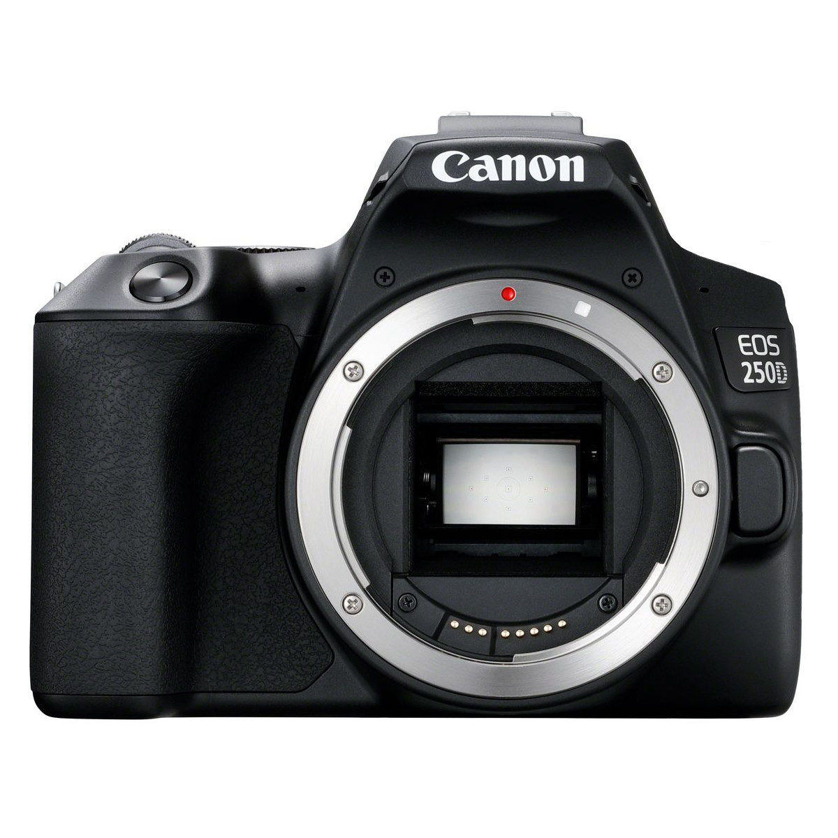 Canon EOS 250D DSLR open-box <br/>€ 389.00 <br/> <a href='https://www.cameranu.nl/fotografie/?tt=12190_474631_241358_&r=https%3A%2F%2Fwww.cameranu.nl%2Fnl%2Fp3160197%2Fcanon-eos-250d-dslr-open-box%3Fchannable%3De10841.MzE2MDE5Nw%26utm_campaign%3D%26utm_content%3DEOS%2Bspiegelreflex%26utm_source%3DTradetracker%26utm_medium%3Dcpc%26utm_term%3DDigitale%2Bcamera%26apos%3Bs' target='_blank'>naar de winkel</a>