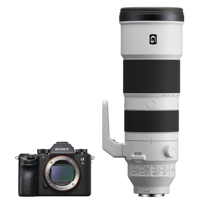 Sony Alpha A9 systeemcamera + 200-600mm f/5.6-6.3 G