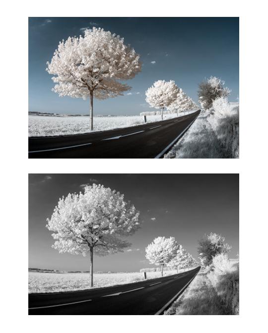 Voorbeeld van bewerkte infraroodfoto's