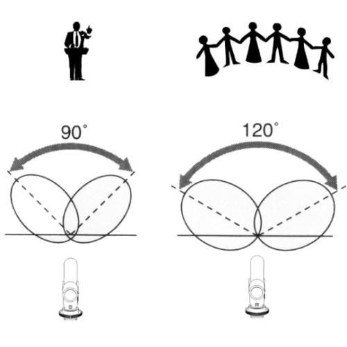 Instelbaar geluidsgebied; 90 of 120 graden