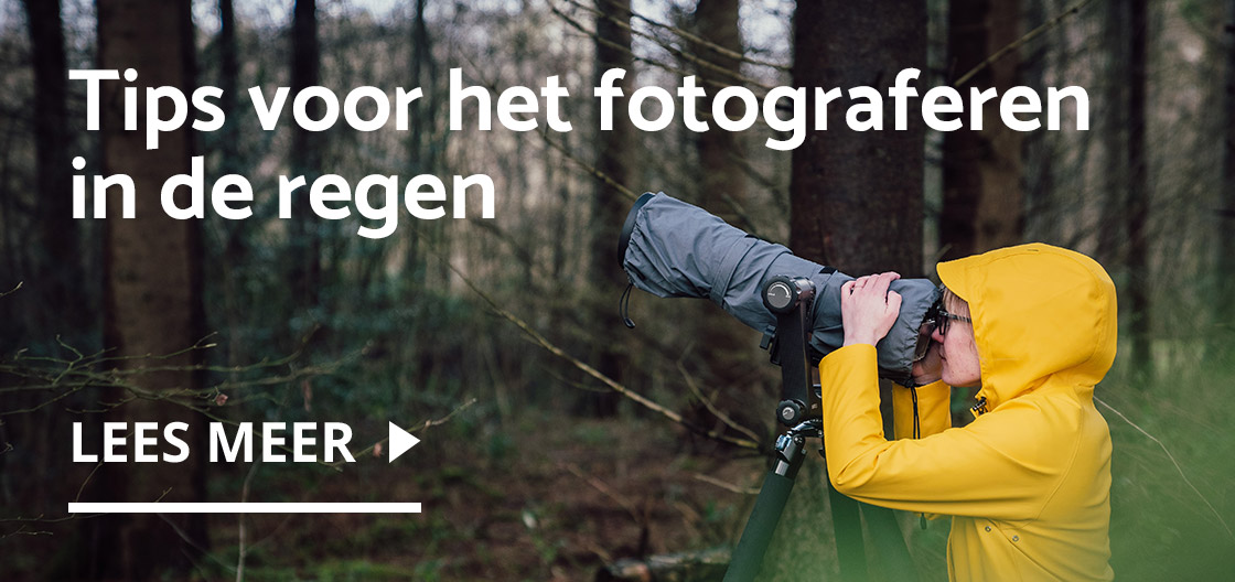 Tips voor fotograferen in de regen