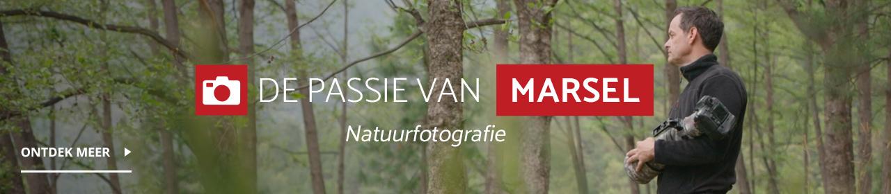 Leer alles over natuurfotografie