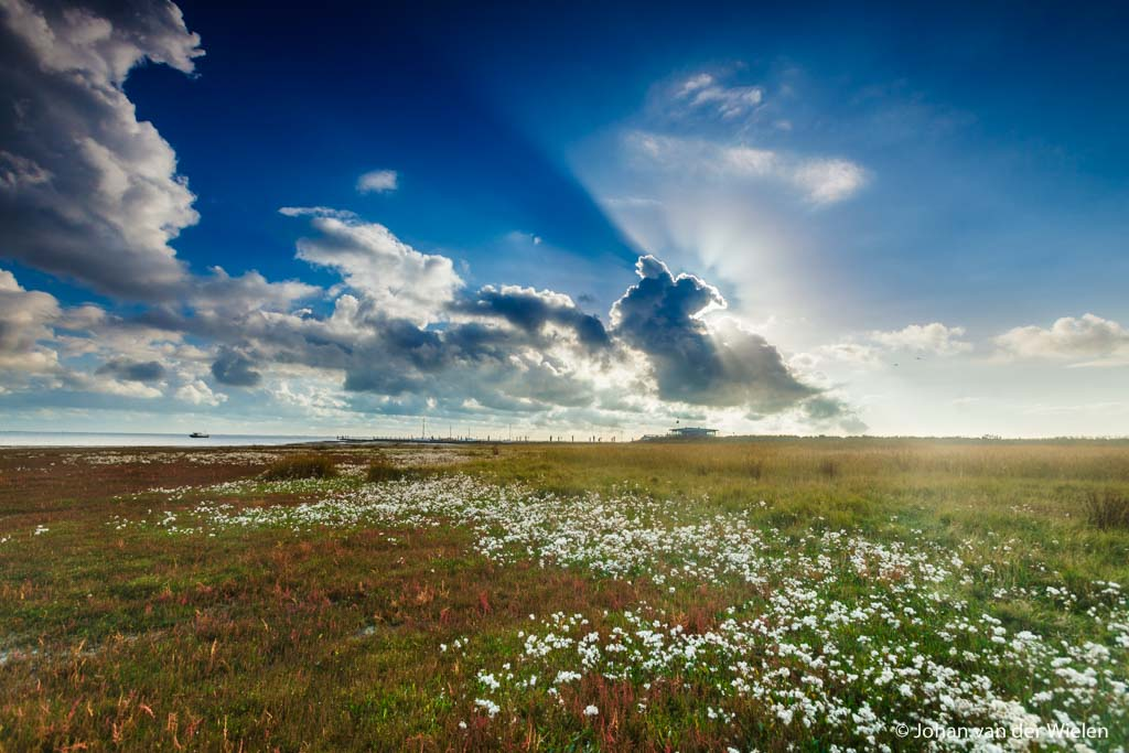 Over het warme licht van de lente en werken met filters - 3
