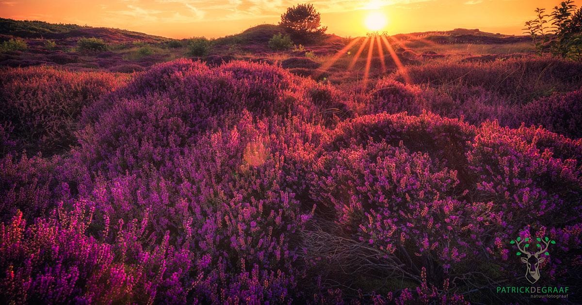 Tips voor het fotograferen van een mooie zonsondergang