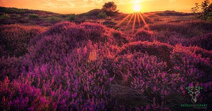 Tips om de zonsondergang te fotograferen