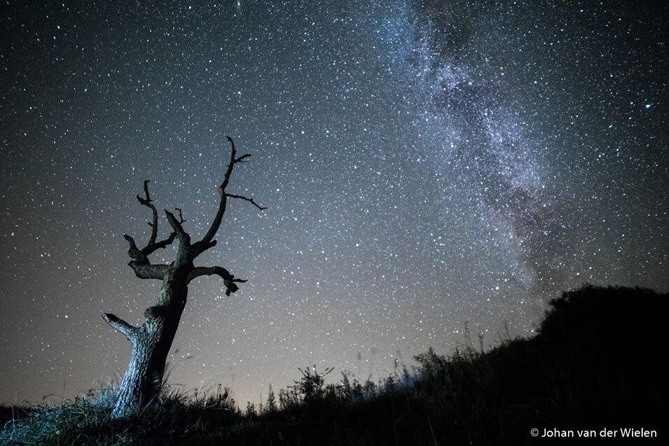 Natuurfotografie in de nacht - 1