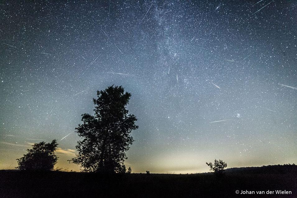 Natuurfotografie in de nacht - 2