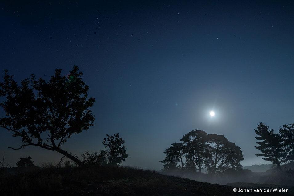 Natuurfotografie in de nacht - 5