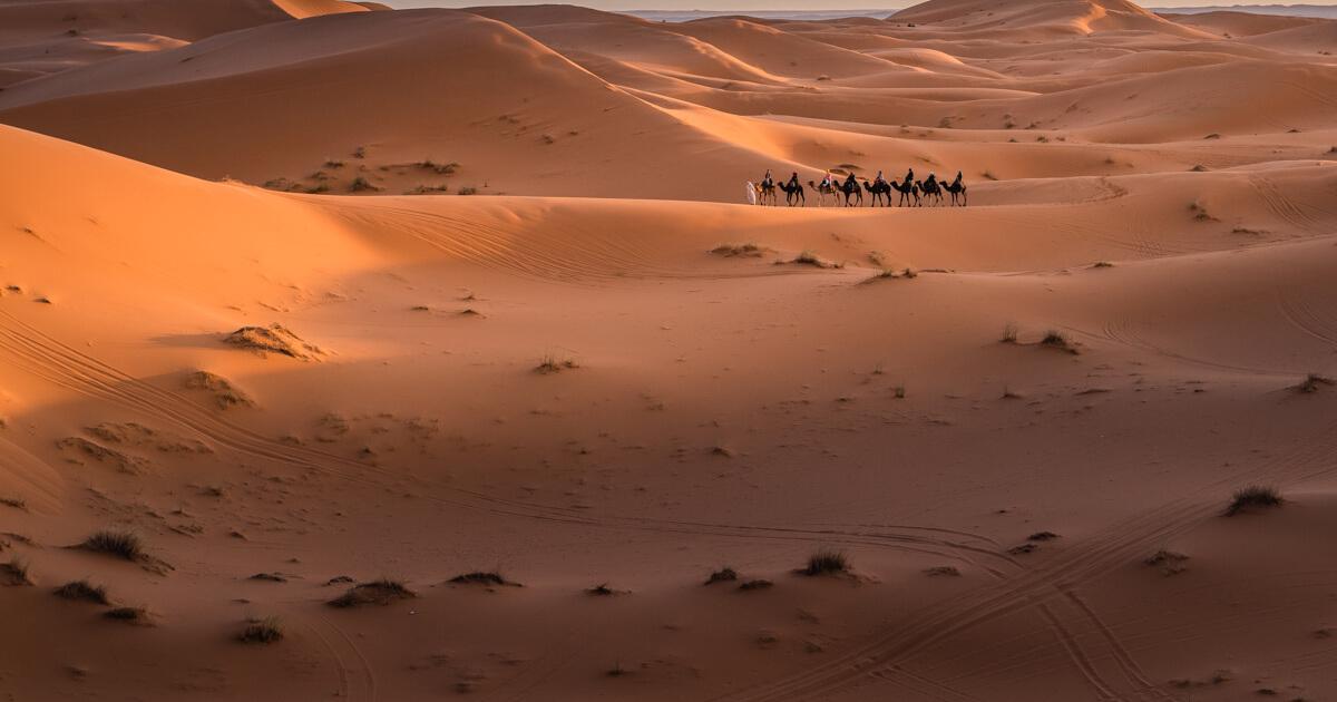 Met de Nikon D850 op reis naar de Sahara