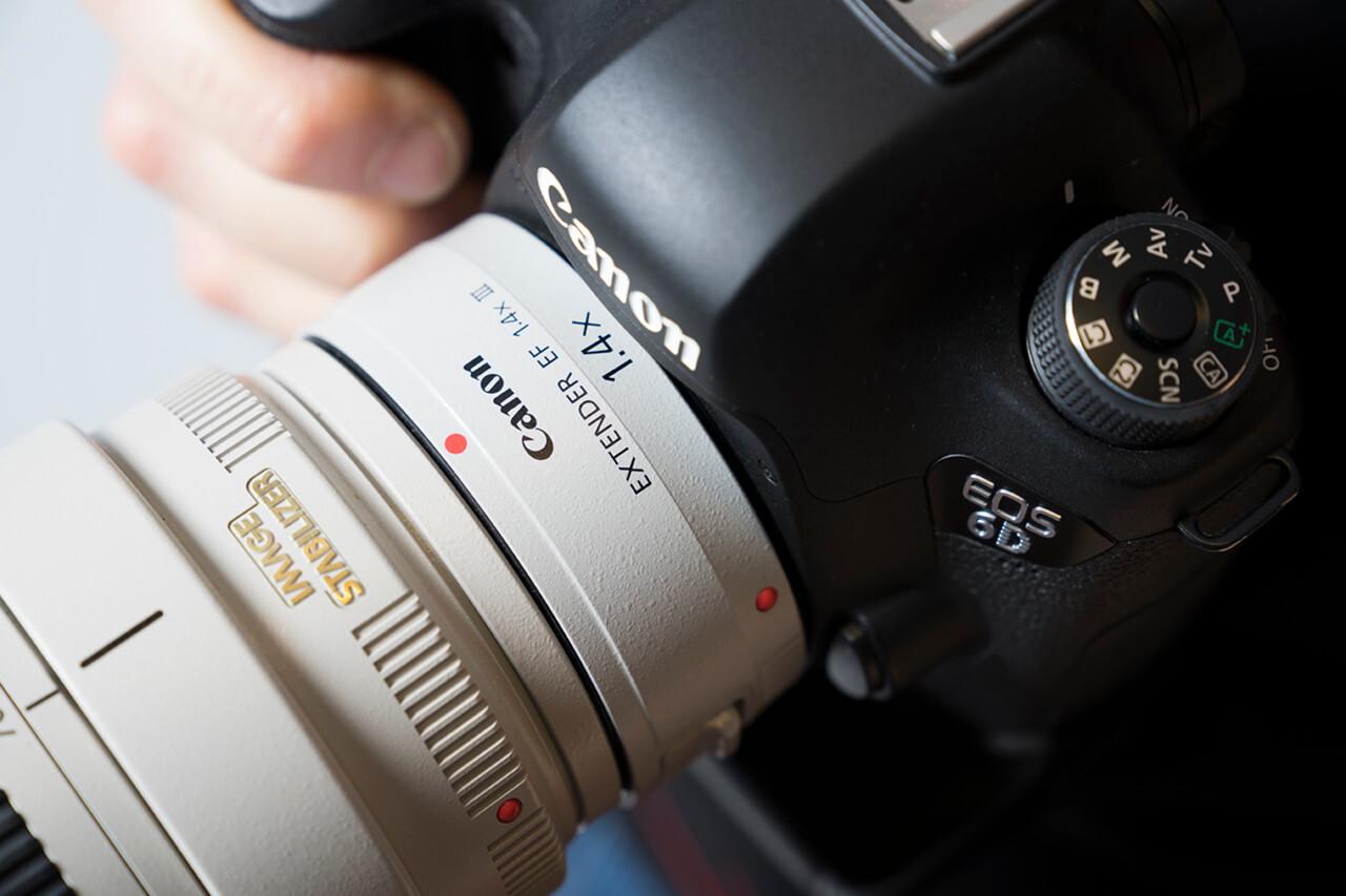 Welke lens voor macrofotografie 38