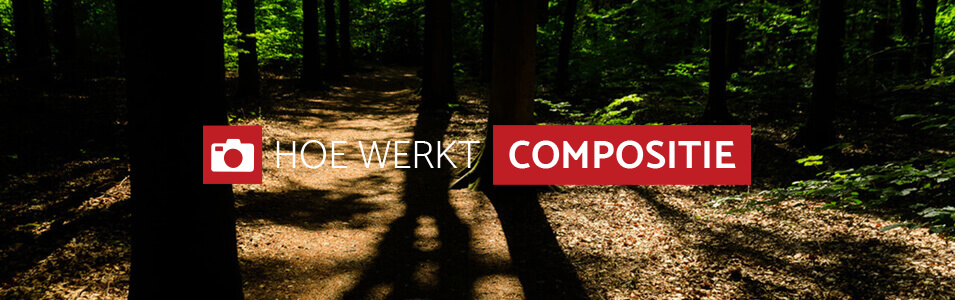 Hoe werkt compositie?