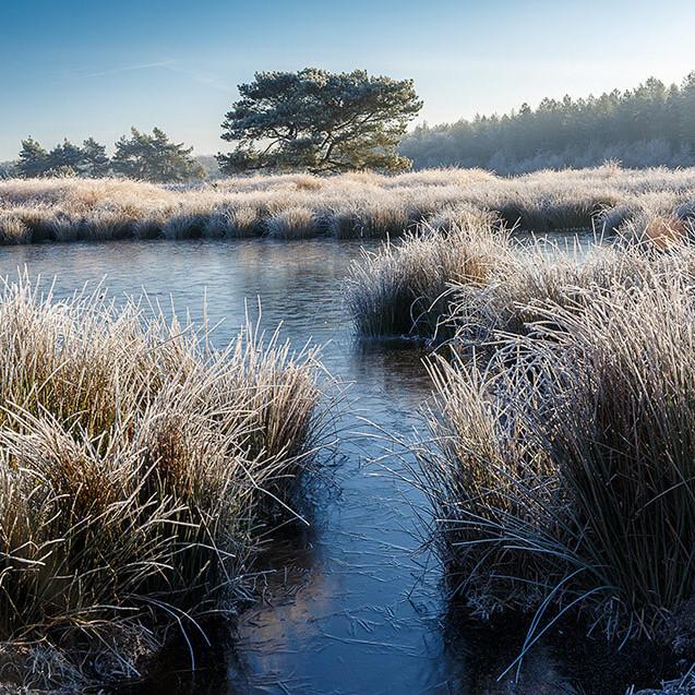 Tips voor fotograferen in de winter