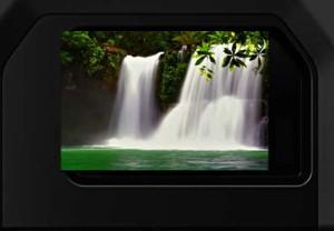 Hoge beeldkwaliteit E-M1X