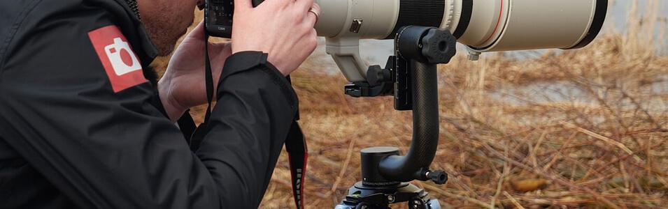 Vogelfotografie met een schommelkop