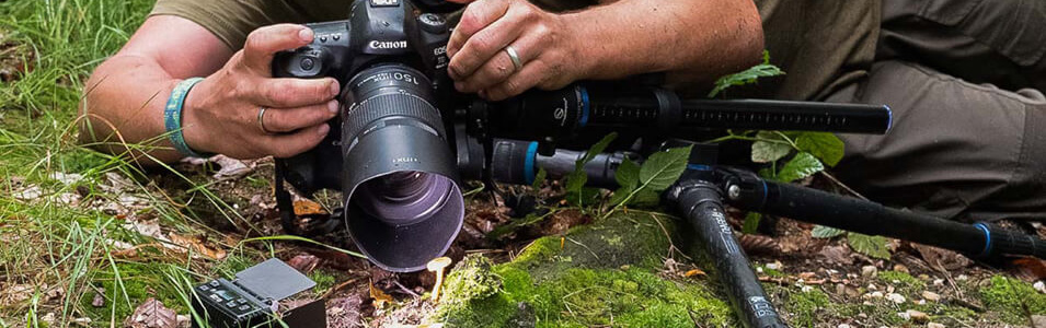 Hoe werkt paddenstoelenfotografie?