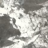 Savage Infinity Canvas Achtergronddoek 2.74 x 6.09 meter Whirlwind - thumbnail 1