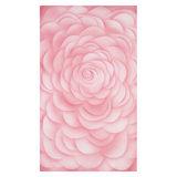 Botero Muslin Achtergronddoek 316 x 700cm Pink nr. 071 - thumbnail 1