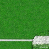 Savage Floor Drop Grass Sports Field - 1.50 x 2.10 meter