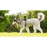 Sony AKA-DM1 Dog Kit - thumbnail 2
