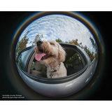 Lensbaby Circular Fisheye Lens 5.8mm voor Canon - thumbnail 5