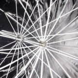 Savage Umbrella 165cm Silver/Black - thumbnail 2