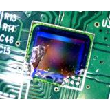 Celestron Handheld Digital Mini microscoop - thumbnail 9