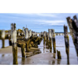Lensbaby Sol 45 Sony A objectief - thumbnail 7