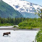 """Gratis lezing Alexander Koenders over """"The last Frontier"""" Alaska"""