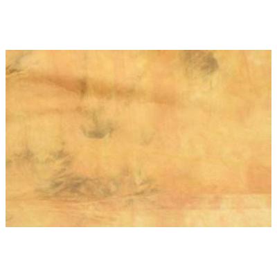 Falcon Eyes Achtergronddoek BC019 270x700
