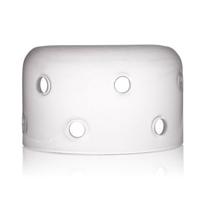 Elinchrom Satin Glass Dome met Fittings
