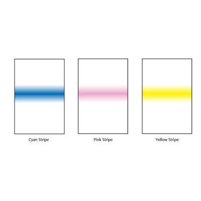 LEE Stripe Set