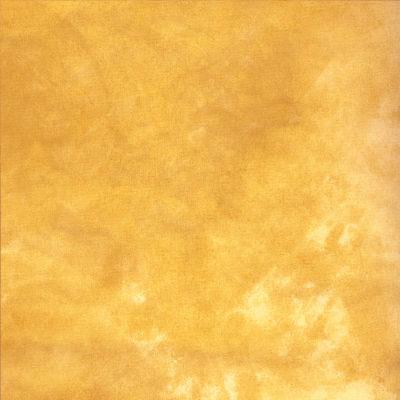 Savage Infinity Canvas Achtergronddoek 2.74 x 6.09 meter Golden Sand