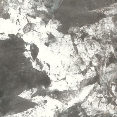 Savage Infinity Canvas Achtergronddoek 2.74 x 6.09 meter Whirlwind