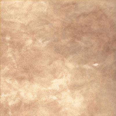 Savage Infinity Canvas Achtergronddoek 2.74 x 6.09 meter Earth