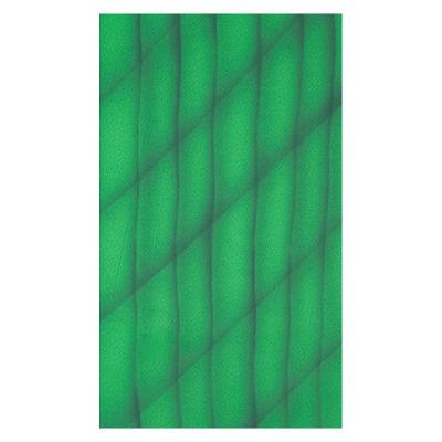 Botero Muslin Achtergronddoek 316 x 360cm Green/Dark Green nr. 074