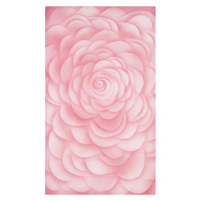 Botero Muslin Achtergronddoek 316 x 700cm Pink nr. 071