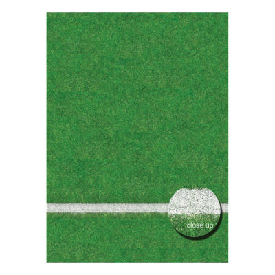 Savage Floor Drop Grass Sports Field - 2.40 x 2.40 meter