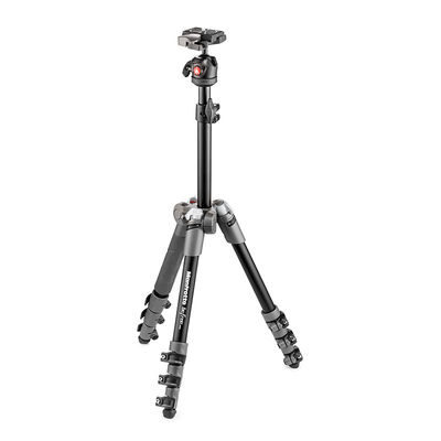 Manfrotto MKBFR1A4D-BH Befree One Grijs + Ball Head