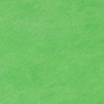 Falcon Eyes Fantasy Cloth FC09 3x6M Chroma key Green